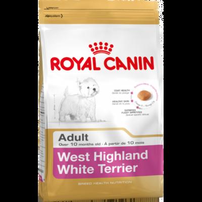 West Highland White Terrier Adult 3 kg